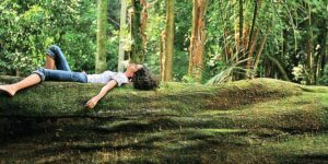 Forest Bathing and Walk and Talk Therapy